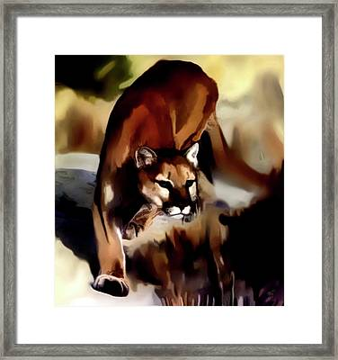 On The Prowl Framed Print by Vic Weiford