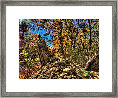 On The Rail Framed Print