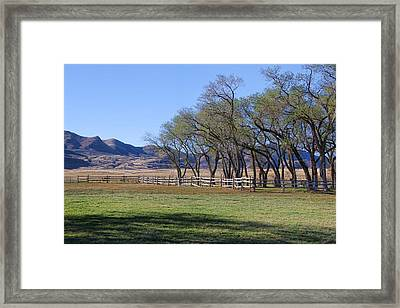 Framed Print featuring the photograph On The Ranch by Ely Arsha