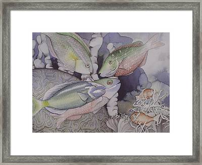 On The Reef Framed Print