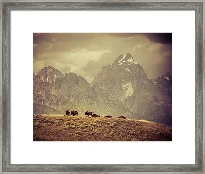 On The Ridge Framed Print by Mary Hone