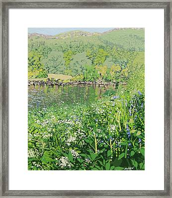 On The Riverbank  Framed Print by Malcolm Warrilow