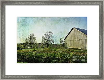 Framed Print featuring the photograph On The Road Again - Ml03 by Aimelle