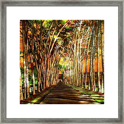 On The Road Framed Print by Michael Durst