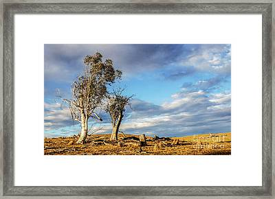 On The Road To Cooma Framed Print