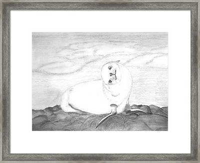 On The Rocks Framed Print by Laura DAddona