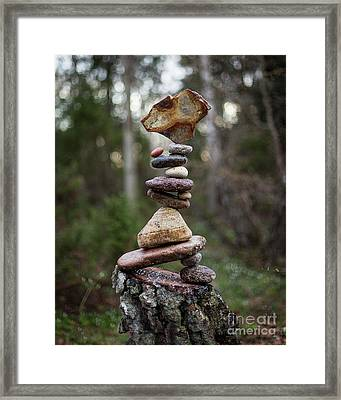 On The Stump Framed Print