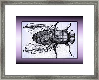 On The Wall Framed Print by Jane Alexander