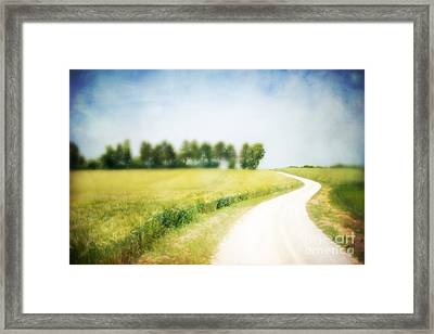 On The Way Through The Summer Framed Print