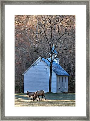 On The Way To Church Framed Print