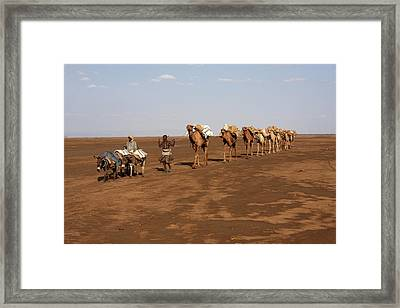 On The Way To Market Framed Print by Aidan Moran