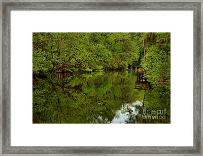 On The Way To The Suwannee River Framed Print by Adam Jewell