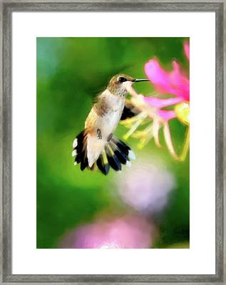 On The Wing Framed Print by Betty LaRue