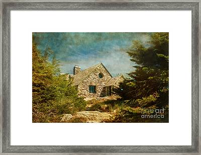 On Top Of It All  Framed Print
