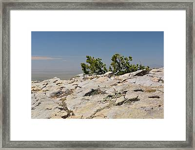 On Top Of Sandia Mountain Framed Print