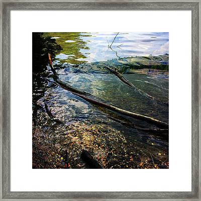On Walden Pond, Concord, Massachusetts, Spring 2014 Framed Print by Michael Manning