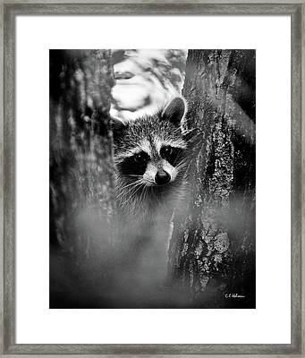 On Watch - Bw Framed Print