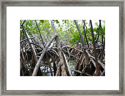 On Water Framed Print by Karla Kernz