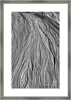 On Wings Of Angels Framed Print by Tim Gainey