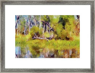 Once A Great Tree Framed Print