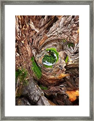 Framed Print featuring the photograph Once A Tree by Pennie  McCracken