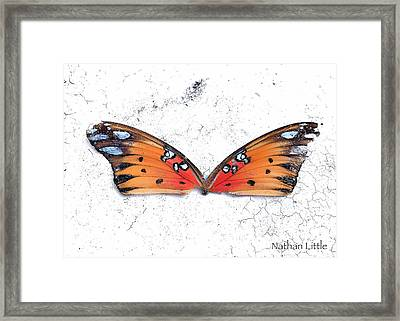 Once Flown Framed Print