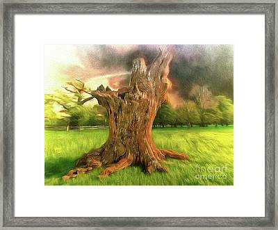 Once I Touched The Stars Framed Print
