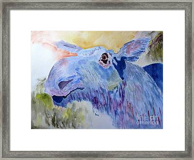 Once In A Blue Moose Framed Print