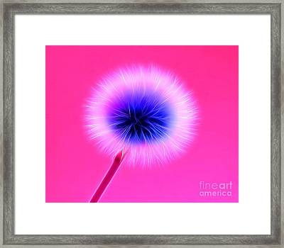 Once In A Lifetime Wish Framed Print by Krissy Katsimbras