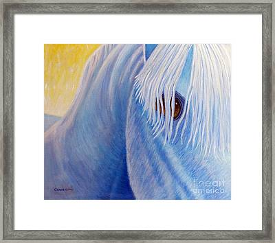 Once Upon A Time Framed Print by Brian  Commerford