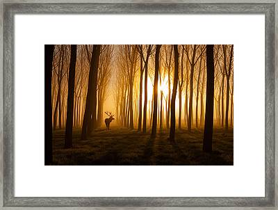 Once Upon A Time Framed Print by Nafets Norim