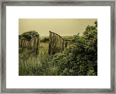 Once Was A Garden Framed Print by Odd Jeppesen
