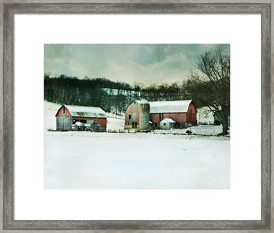 Once Was Special Framed Print by Julie Hamilton