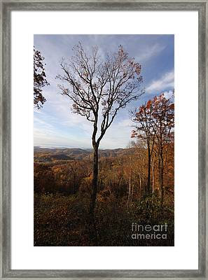 One Framed Print by Alexa Gurney
