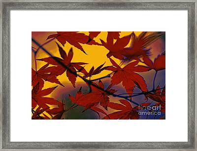 One Autumn Evening By Kaye Menner Framed Print by Kaye Menner
