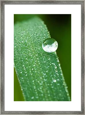 Framed Print featuring the photograph One Big Drop by Monte Stevens