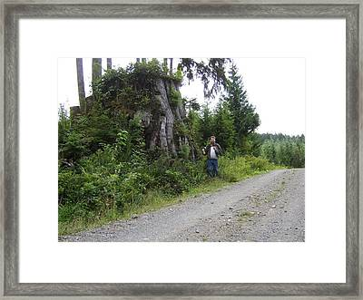 One Big Stump Framed Print by Ken Day