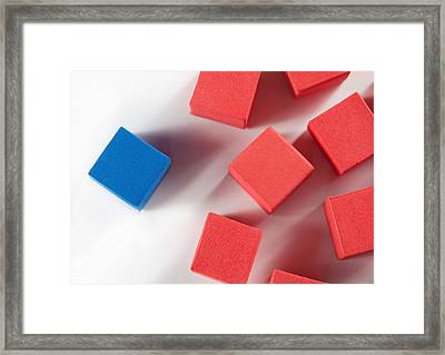 One Blue One Framed Print