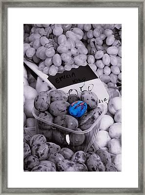 One Blue Plum Framed Print by Michael Henderson