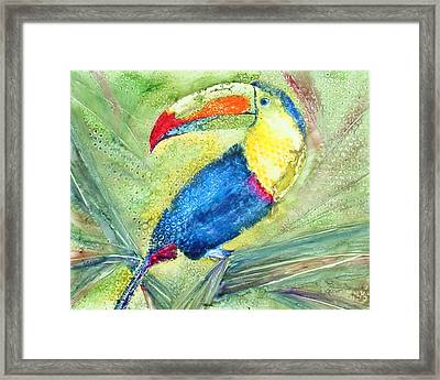 One Can't But Toucan Framed Print