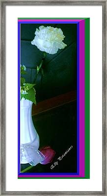 One Carnation And One Rose Bud Framed Print