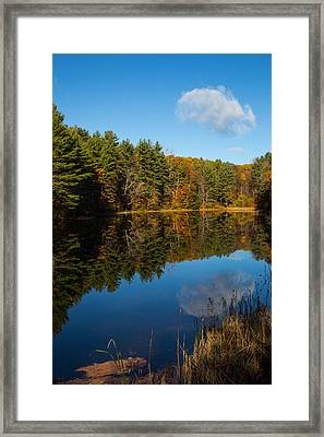 One Cloud Framed Print by Karol Livote