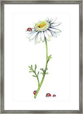 Framed Print featuring the painting One Daisy And Four Ladybugs by Heidi Kriel