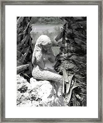 One Day.. Black N White Framed Print by Debbie May