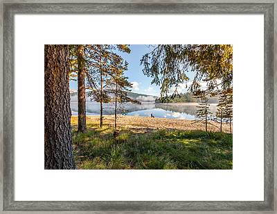 One Day In Pardise Framed Print by Evgeni Dinev