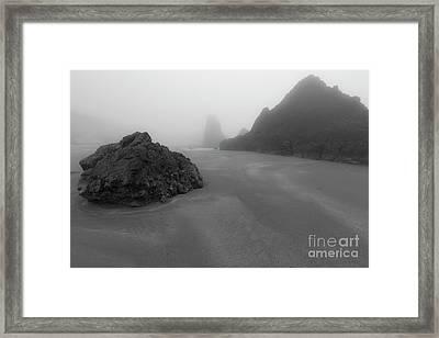 One Day In The Fog Framed Print by Masako Metz