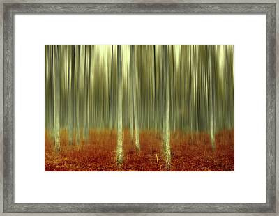 One Day Like This Framed Print