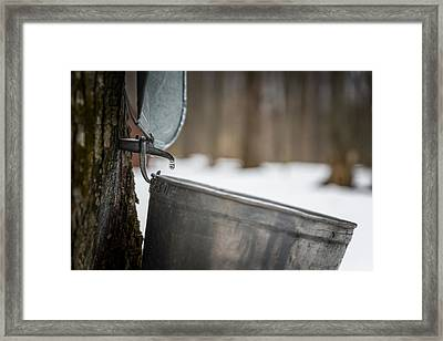 One Drop At A Time Framed Print by Chris Bordeleau