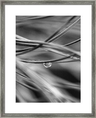 One Drop Framed Print