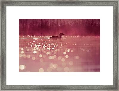 One Fine Morning Framed Print by Roeselien Raimond